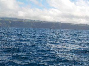 Ca. 90% unserer Bilder von Walen und Delfinen sehen so aus. Die Tiere erscheinen und verschwinden so rasch, dass der durchschnittliche menschliche Reflex nicht reicht, sie ablichten zu können. © 2016 litteratur.ch