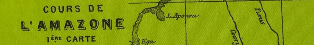Jules Verne: Die Jangada. 800 Meilen auf dem Amazonas
