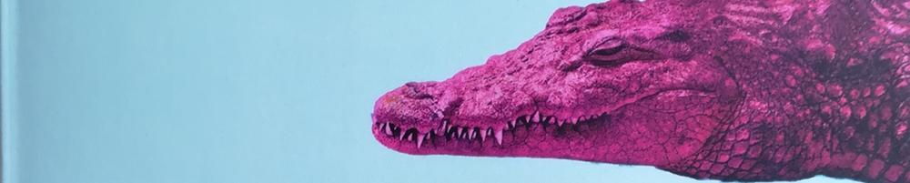 Qiu Miaojin: Aufzeichnungen eines Krokodils